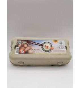 Freiland Eier 10 STK (L)