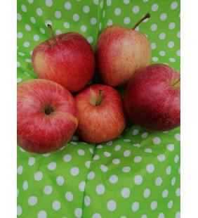 Äpfel Gala 1Kg